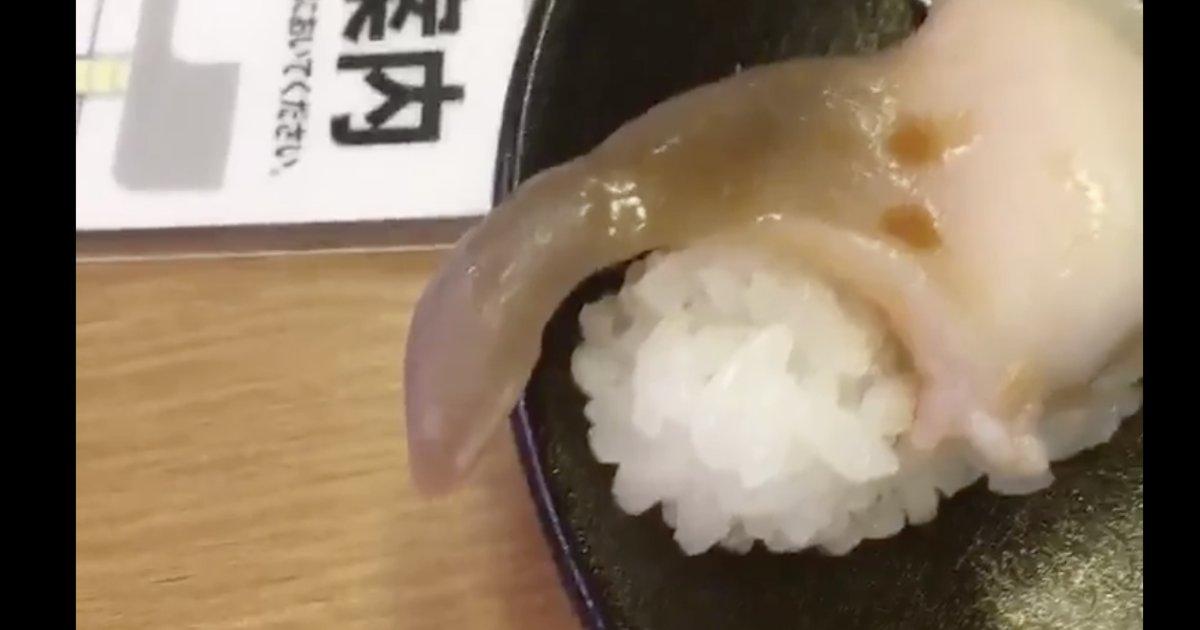 초밥을 먹으려고 했더니, 조개가 움직이기 시작했다에 대한 이미지 검색결과