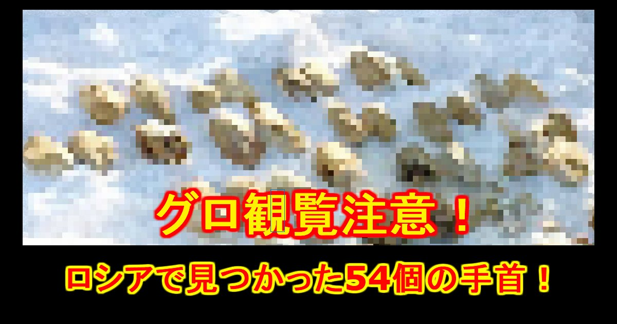 unnamed file 33.jpg?resize=1200,630 - 【グロ観覧注意】事件!?殺人!?シベリアで人間の手首54個発見