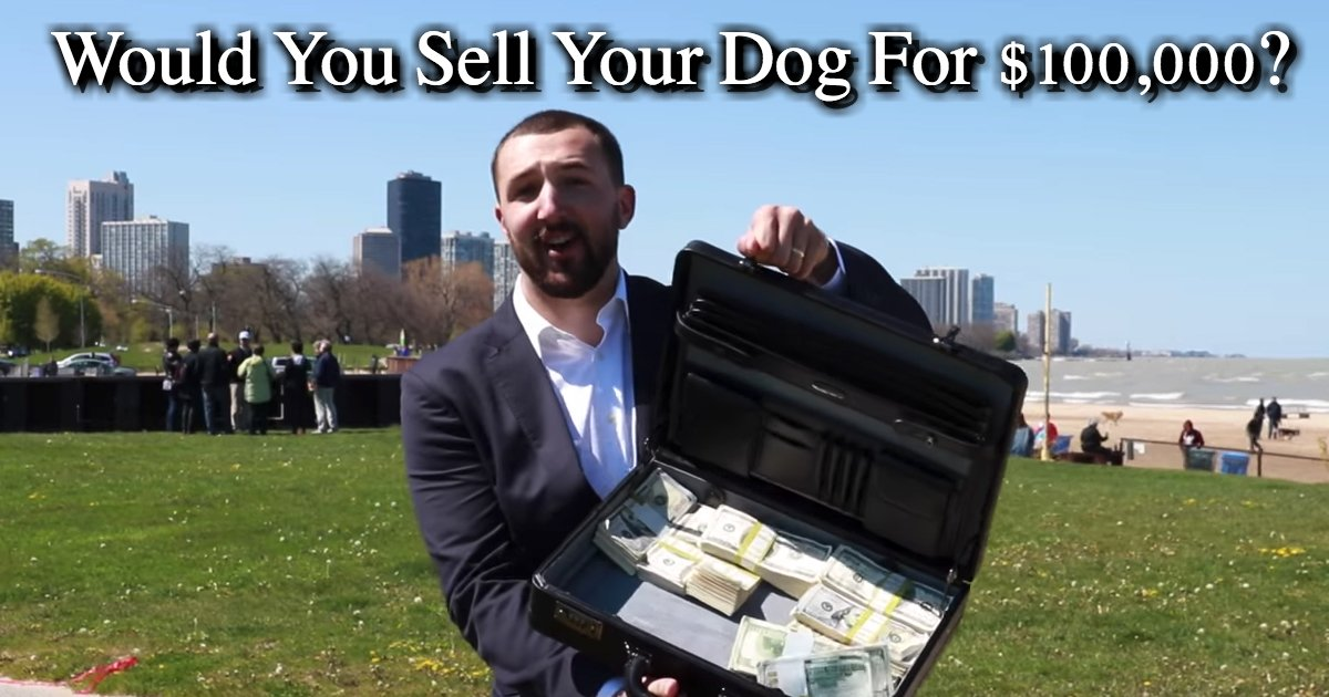untitled 1 35.jpg?resize=300,169 - Social Experiment: Would You Sell Your Dog For $100,000?