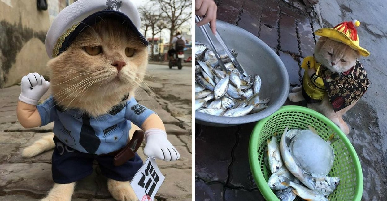 untitled design 8 - This Adorable Fish Vendor Keeper In Vietnam Will Definitely Melt Your Heart