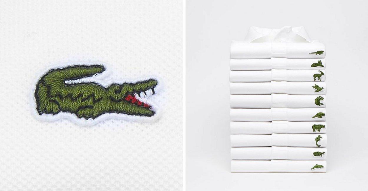 untitled design 9 1.png?resize=1200,630 - Lacoste remplace son emblématique logo par des espèces en voie de disparition et les réactions sont diverses.