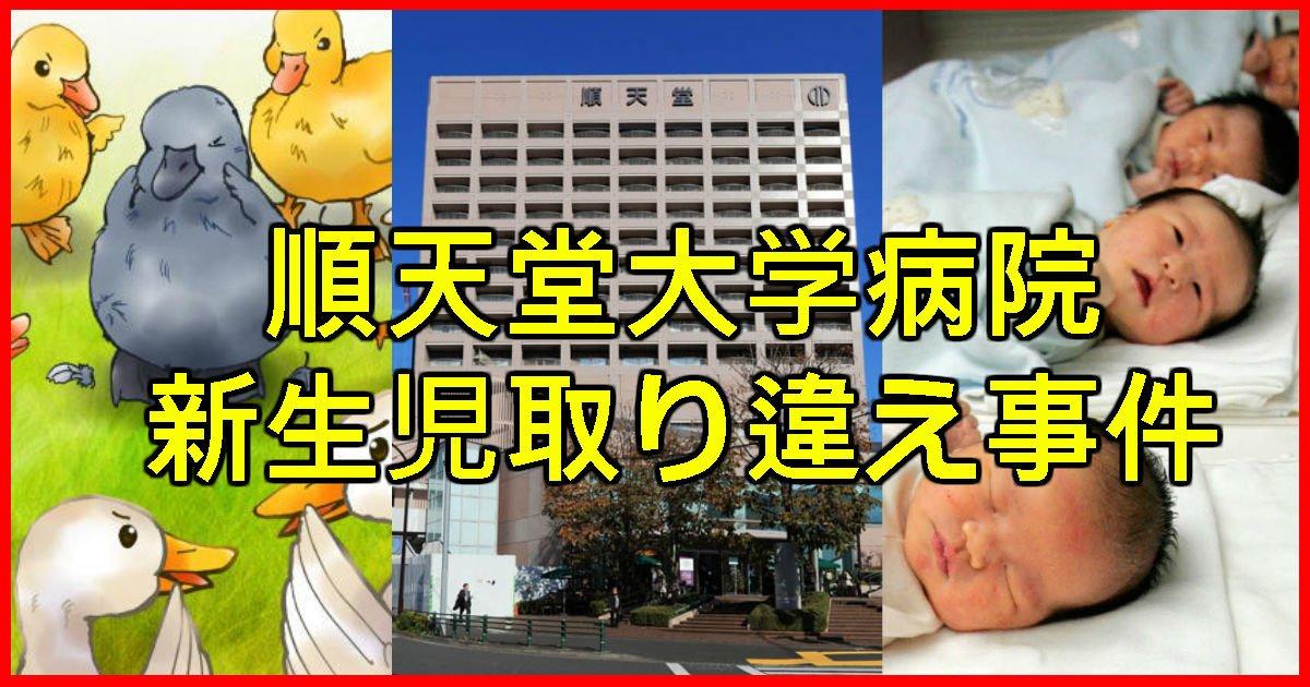 11 47 - 【順天堂医院】新生児取り違えで人生が変わった被害者の現在