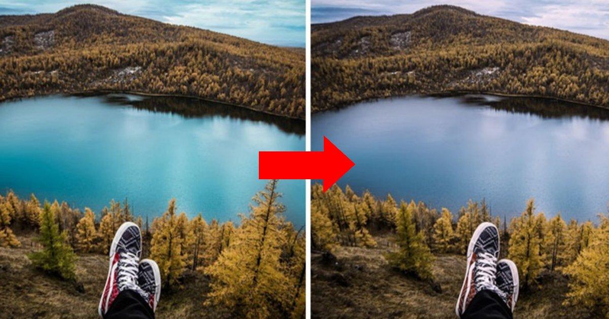 14 61.jpg?resize=412,275 - 색약 또는 색맹인 사람들이 보는 세상 (사진)