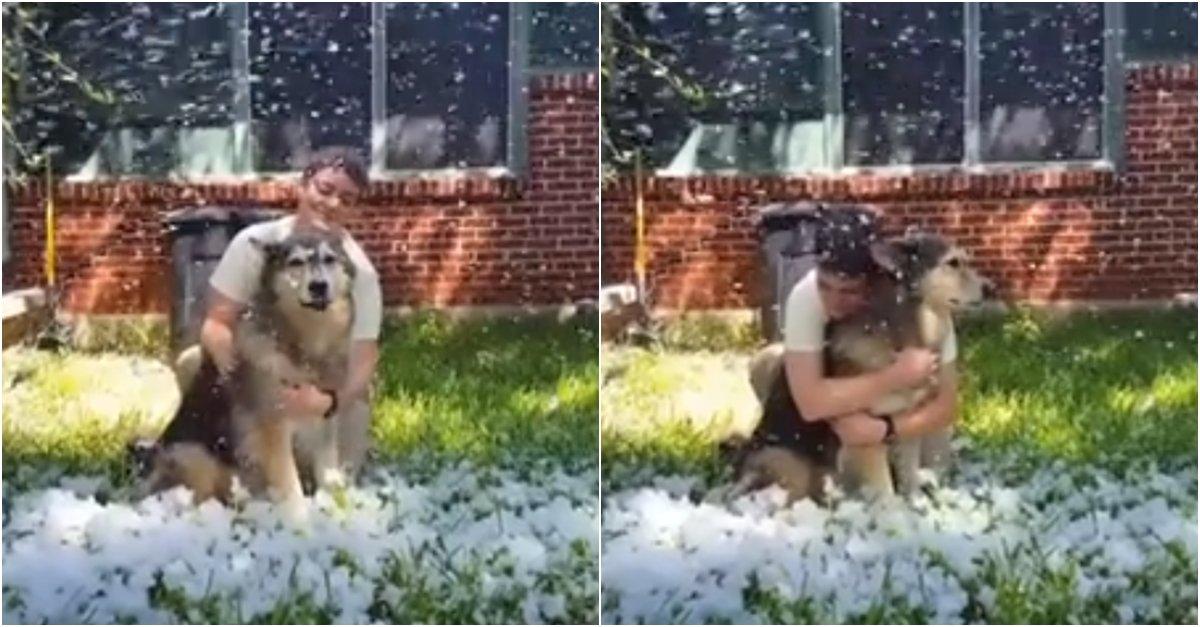 20180406111323 page2.jpg?resize=1200,630 - 雪が懐かしい「まもなく亡くなる」ペット犬に人工雪を作った飼い主