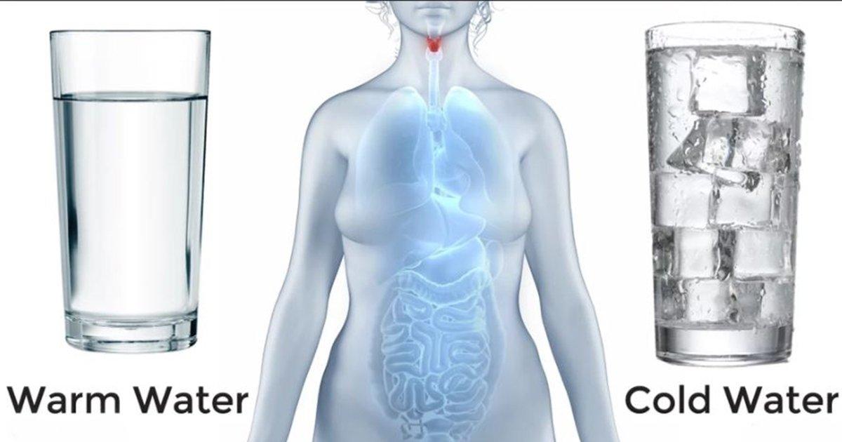 2ec8db8eb84ac 5.jpg?resize=412,232 - Avantages pour la santé de boire de l'eau chaude contre de l'eau froide