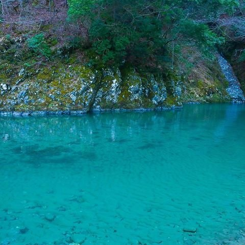 ユーシン渓谷 綺麗에 대한 이미지 검색결과