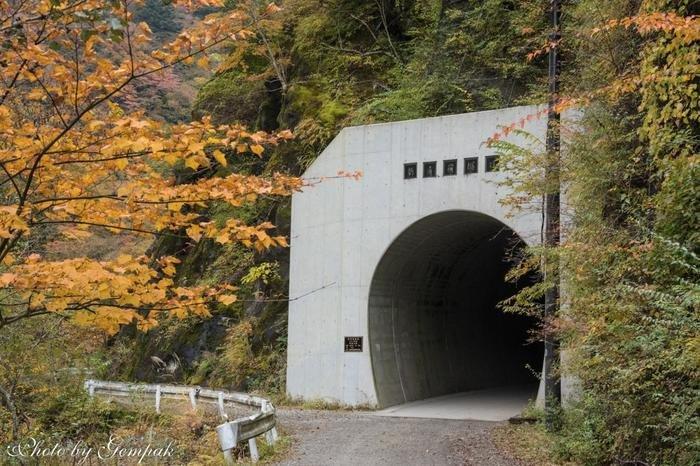 そしてスタートから約6km。いよいよ、2つ目のトンネル「新青崩隧道」に。