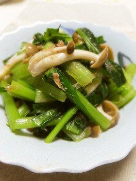 小松菜 おひたし에 대한 이미지 검색결과