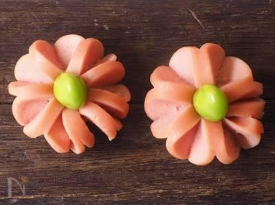 お花のウインナー에 대한 이미지 검색결과