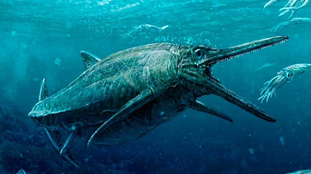 Resultado de imagen para gigante marino