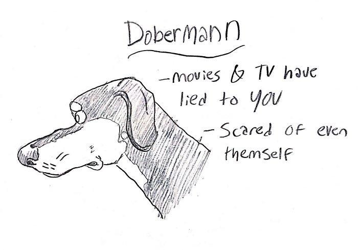 Dog-Breeds-Traits-Guide-Cartoons-Grace-Gogarty