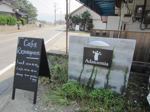 Adansonia 糸島에 대한 이미지 검색결과