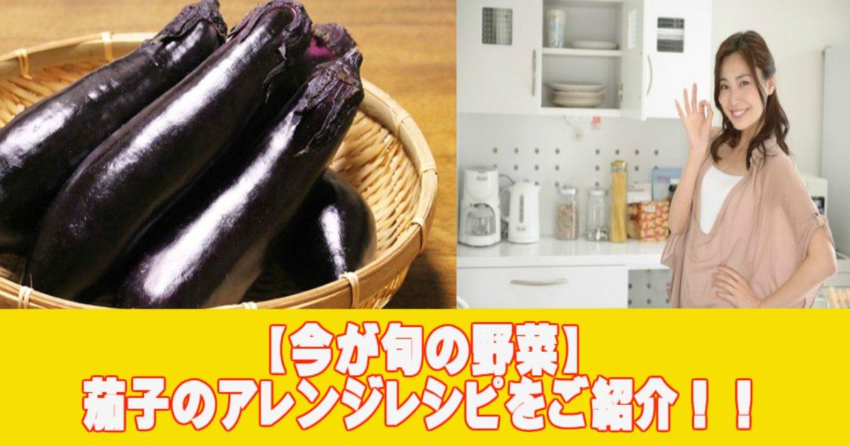 a 17.jpg?resize=1200,630 - 【今が旬の野菜】茄子のアレンジレシピをご紹介!!