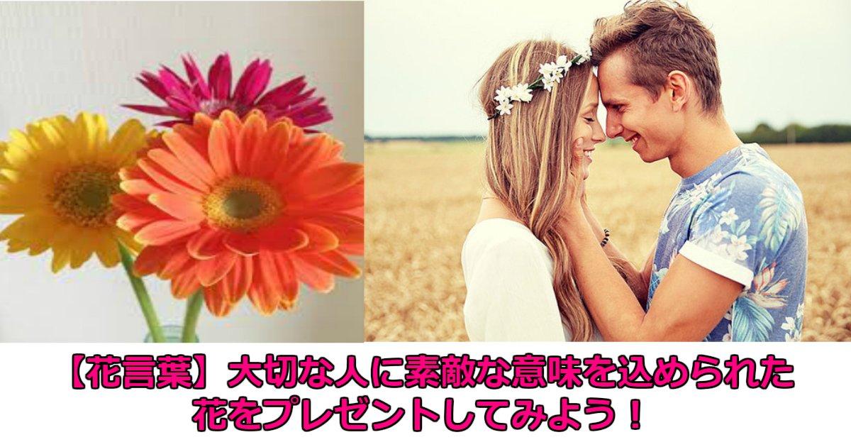 aa 3.jpg?resize=1200,630 - 【花言葉】大切な人にこんな素敵な意味を込められた花をプレゼントしてみては?