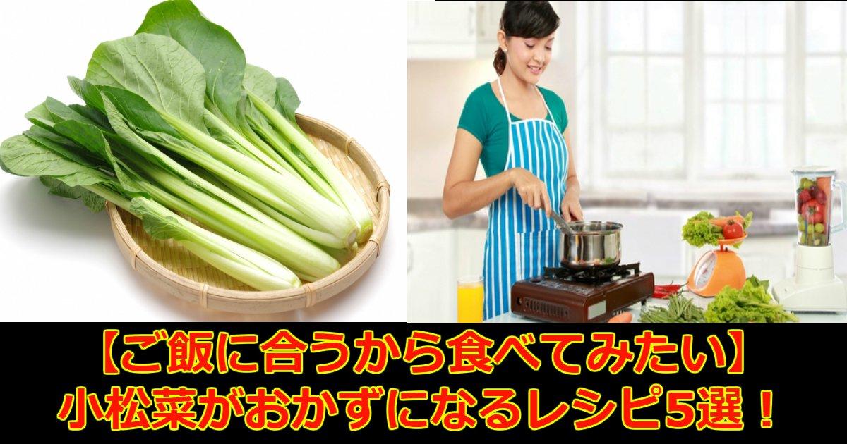 aa 4.jpg?resize=1200,630 - 【ご飯に合う】小松菜がおかずになるレシピ5選!