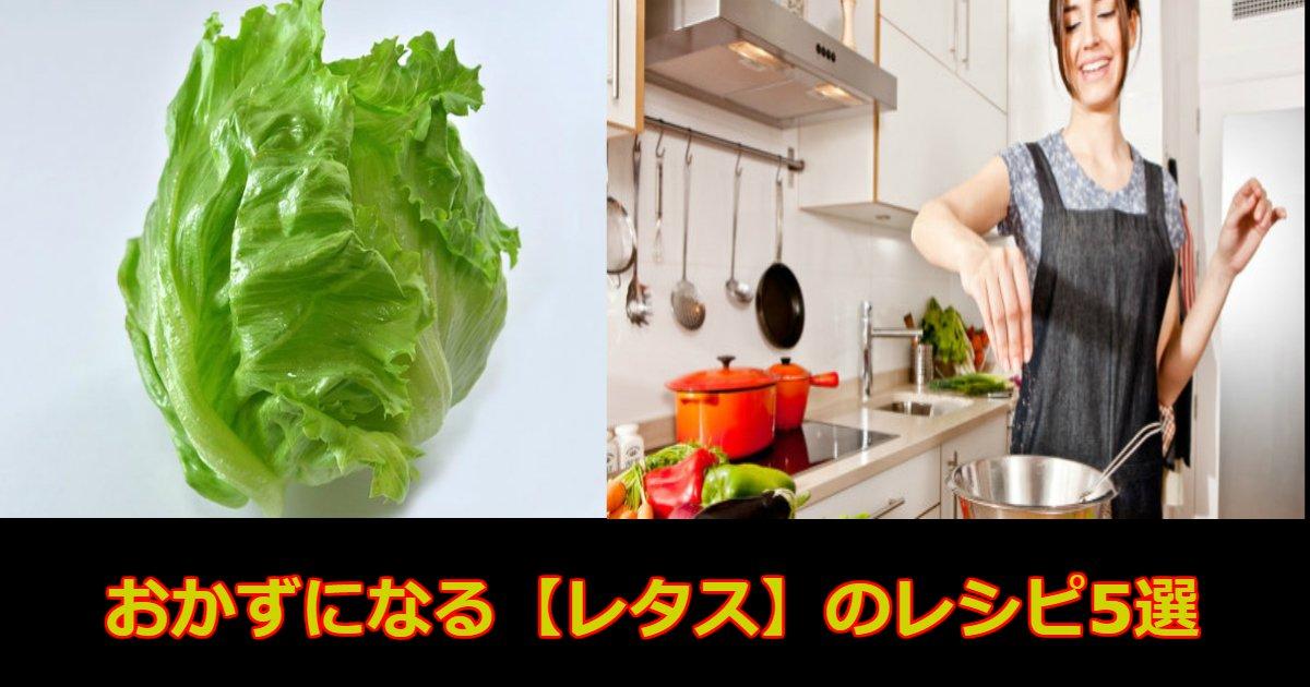 aa 8 - サラダだけじゃない、おかずになる【レタス】のレシピ5選!