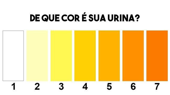 aaa 13.jpg?resize=1200,630 - Preste atenção: a cor da sua urina diz muito sobre a sua saúde