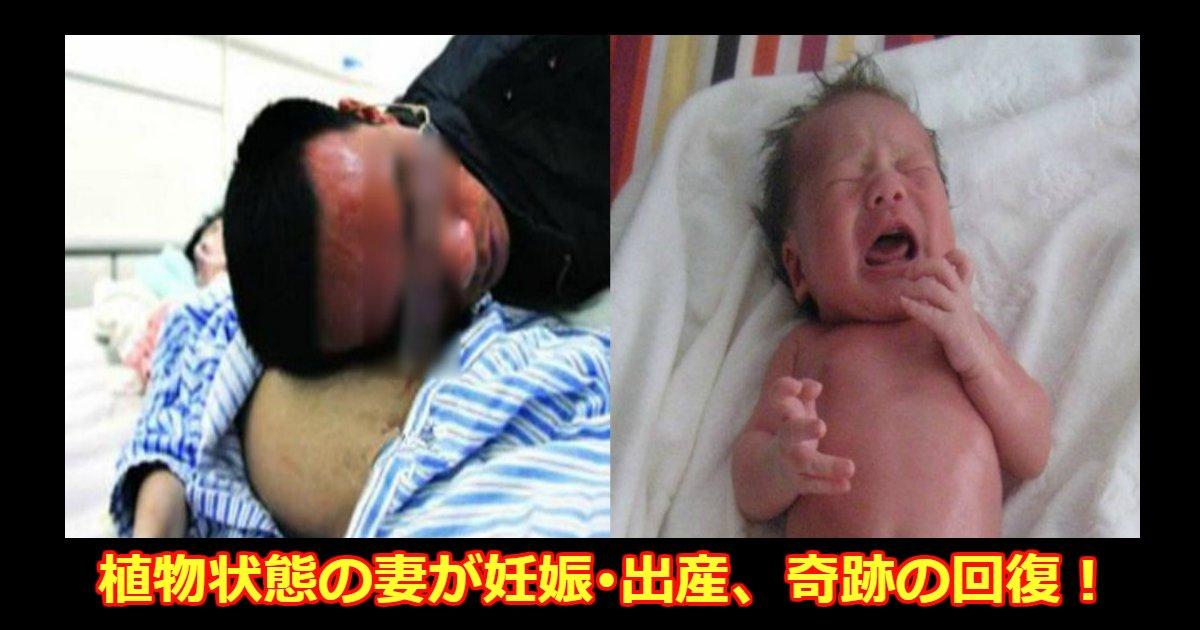 akachan.png?resize=1200,630 - 植物状態に陥った妻が妊娠・出産した後に意識を取り戻した実話が泣ける