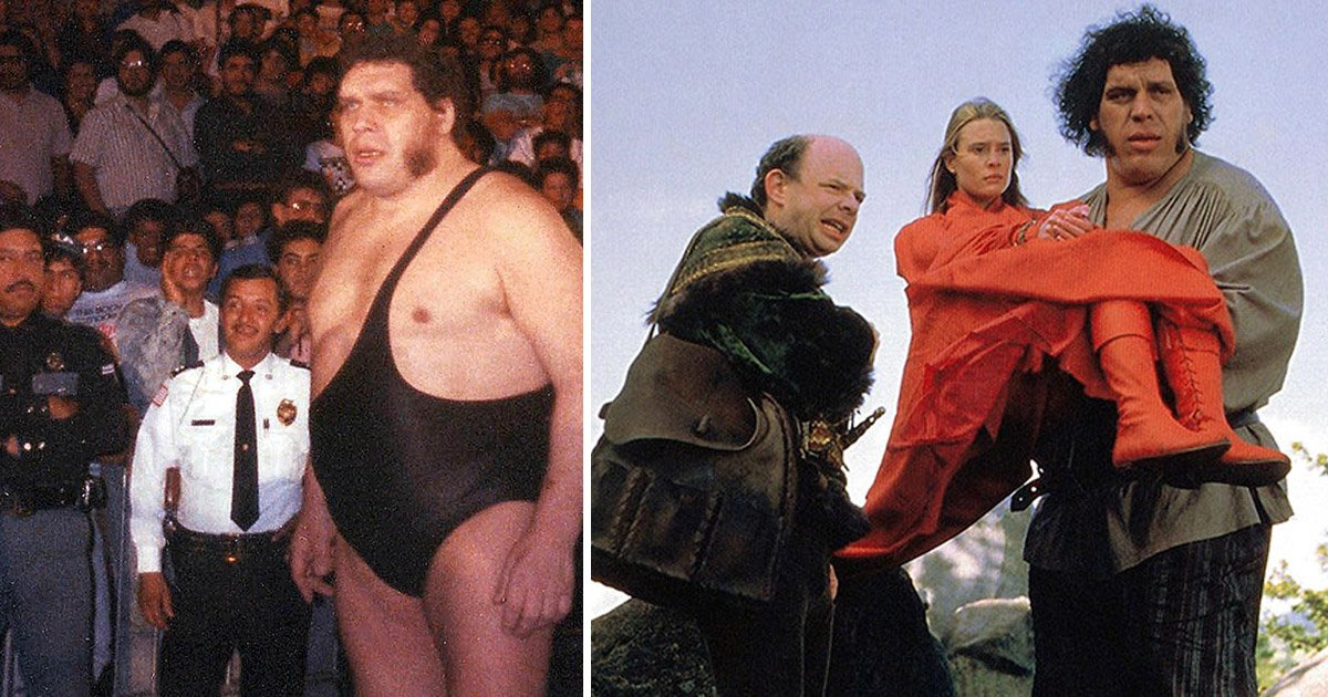 body - HBO Releases A Heartbreaking Documentary On The Unseen Side Of Andre The Giant
