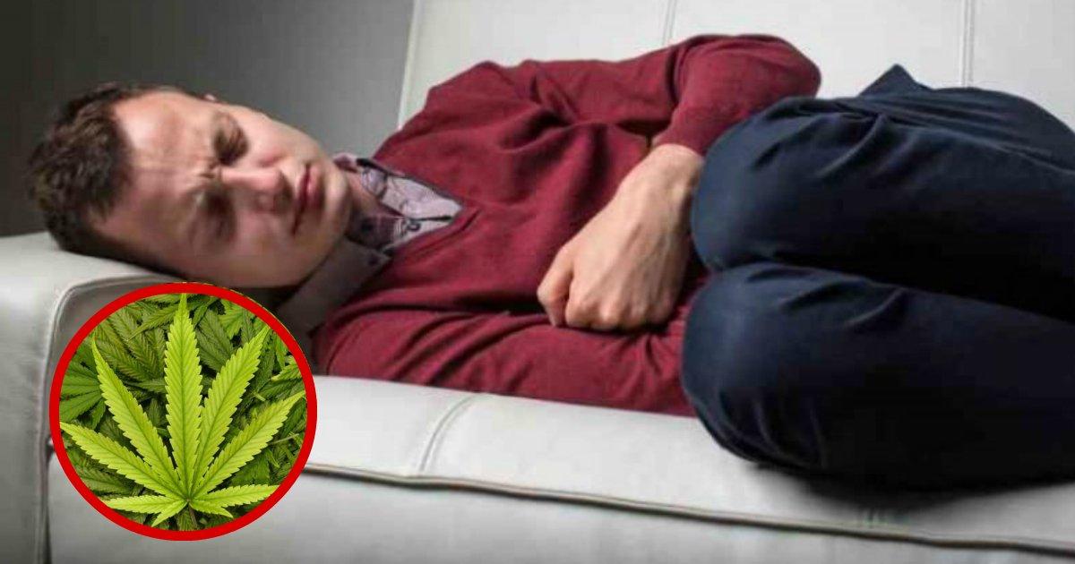 cannabis 1 - A Study Shows That Cannabis Is A Viable Treatment For Crohn's Disease