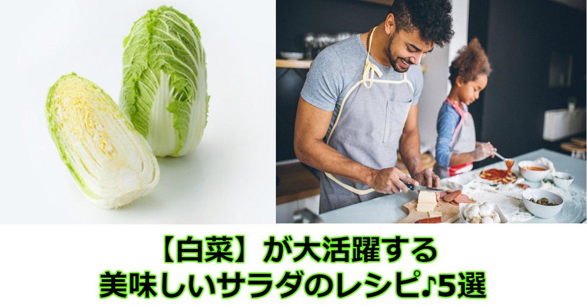 cc.jpg?resize=300,169 - 【白菜】が大活躍する美味しいサラダのレシピ♪5選