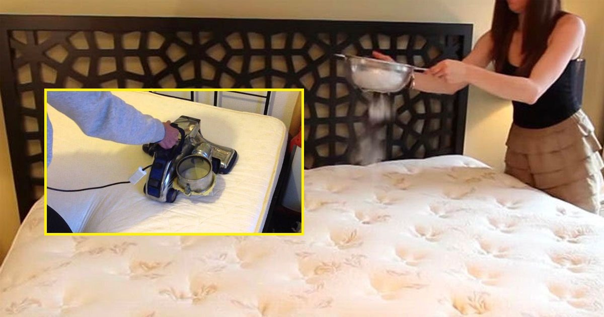 clean - Easy and Simple Way to Get Rid of All the Dirt in Your Mattress