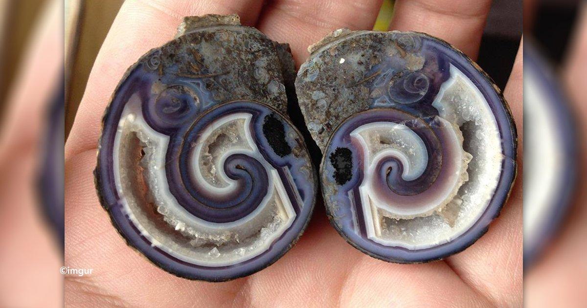 cover22piedras.jpg?resize=300,169 - Se encontró unas piedras extrañas, años después revela su increíble misterio