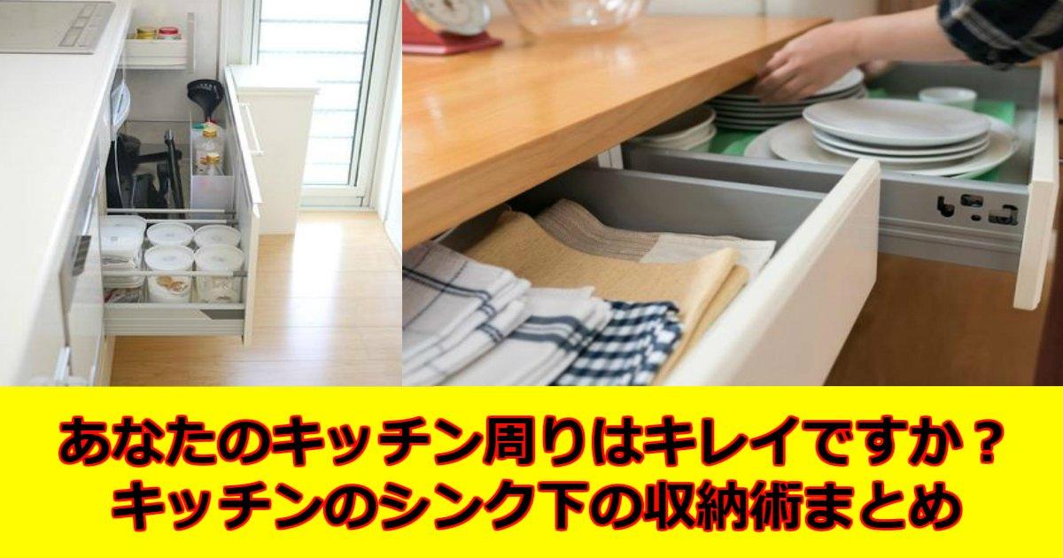 d 2 - キッチン「シンク下」の収納法を知りたい人必見!パパっと取り出せる収納法まとめ