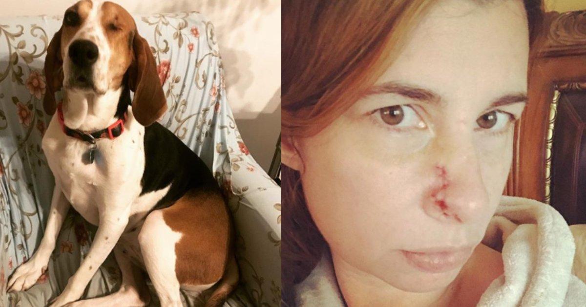 dog keeps sniffing.jpg?resize=412,232 - Sa chienne renifle son visage avec insistance : Elle découvre qu'elle a un cancer