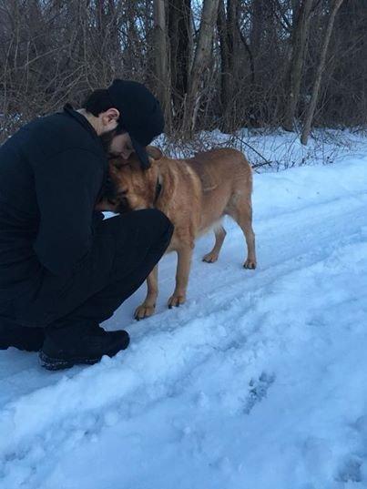chien-snubs-tout-le-monde-après-propriétaire-meurt-6