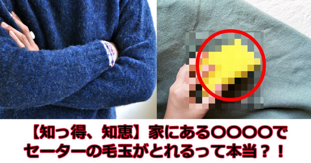 e38182e38182e38182e38182.jpg?resize=1200,630 - 【知っ得、知恵】家にある〇〇〇〇でセーターの毛玉がとれるって本当?!