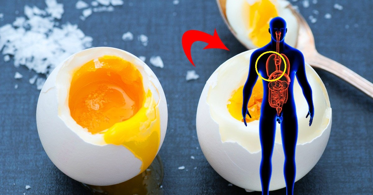 eggs 2 - These Hidden Benefits of Eating Eggs Will Surprise You
