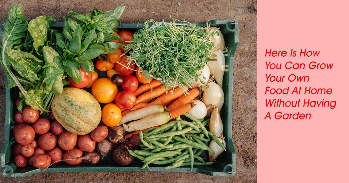 foods.jpg?resize=1200,630 - Voici comment vous pouvez cultiver votre propre nourriture à la maison même sans jardin.