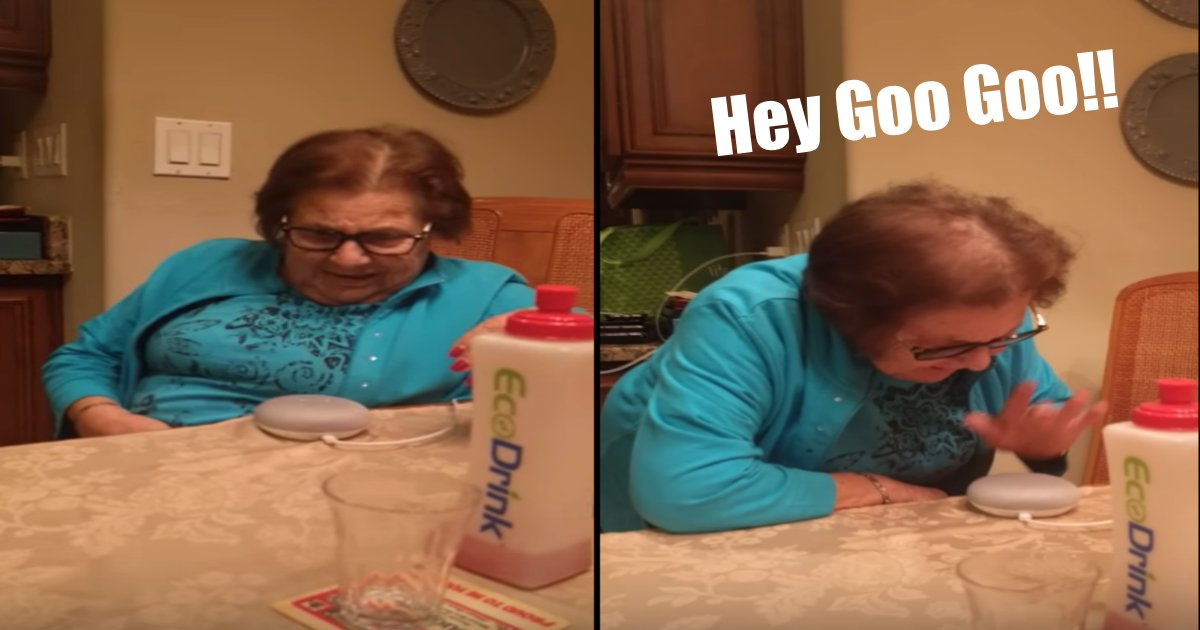 goo tn 1 - This Grandmother's Initial Reaction To Using Google Home Is Hilarious