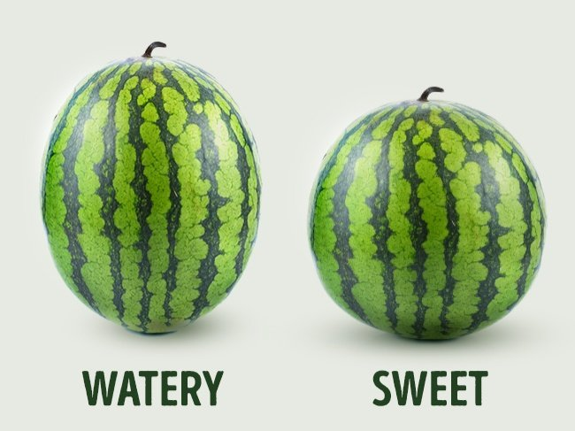 comment-spot-a-perfect-melon d'eau-3