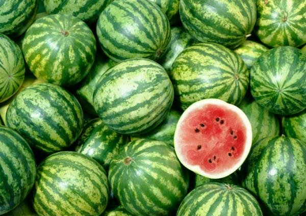 comment-spot-a-perfect-melon d'eau-4