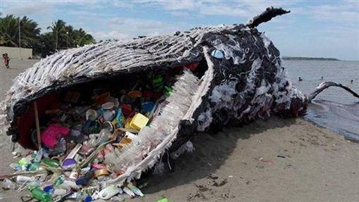 img 5ada4b0126cf4.png?resize=1200,630 - 海灘上驚見抹香鯨滿肚「被塑料垃圾淹沒」死狀淒慘,動保人士:心碎