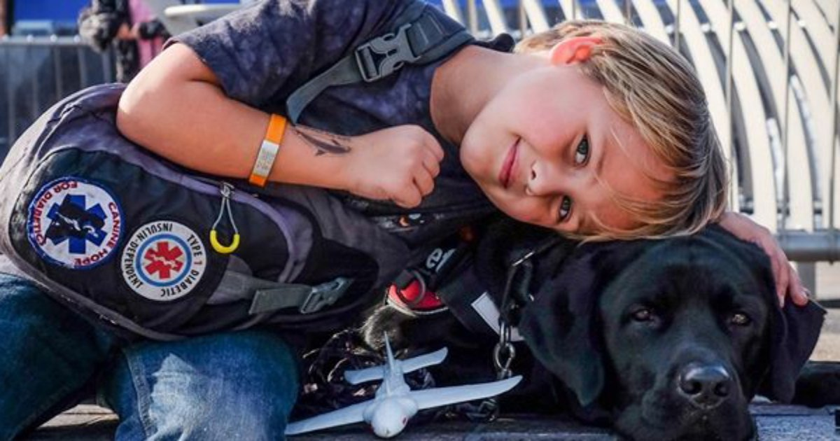 jedi - Service Dog Warns Mom In The Nick Of Time To Save Her Son's Life