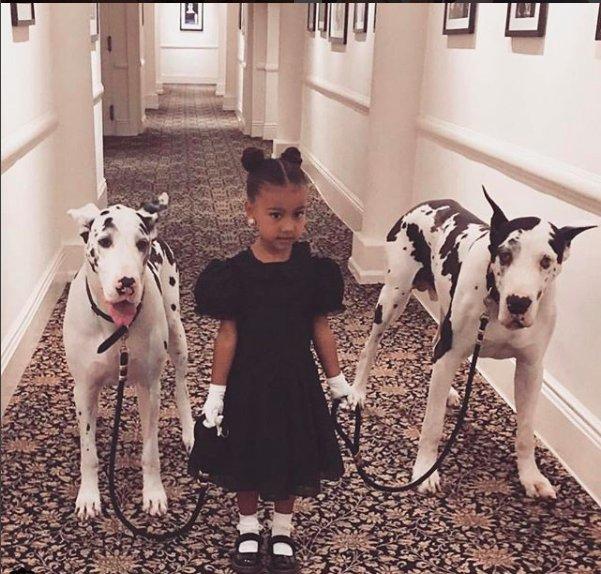 kim-kardashian-family-pic-2