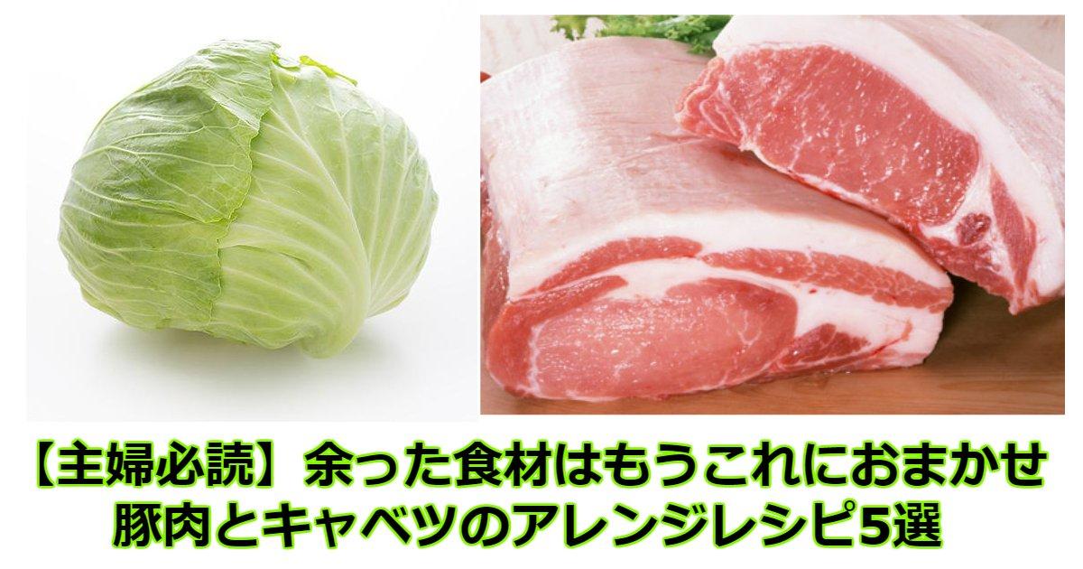 kya - 【主婦必読】余った食材はもうこれにおまかせ♡豚肉とキャベツのアレンジレシピ5選♡