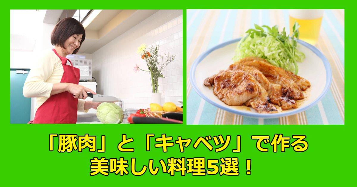 kyaba - 家にある食材「豚肉」と「キャベツ」で作る美味しい料理5選!