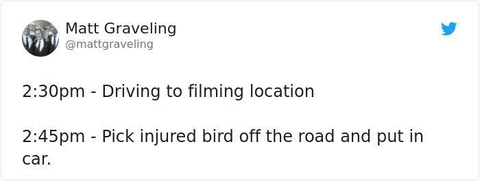 homme-regrets-décision-de-sauvetage-blessé-oiseau-2