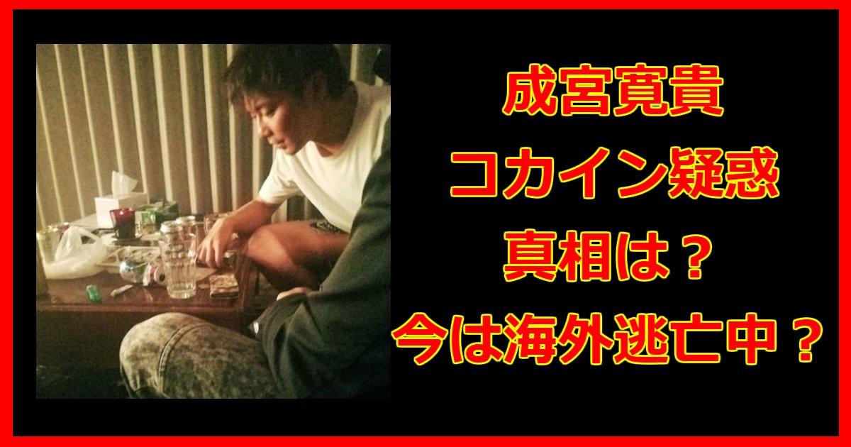 narimiyaaa.png?resize=300,169 - コカイン疑惑で芸能界引退した成宮寛貴の真相と現在