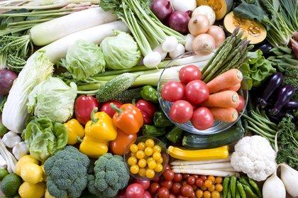 食材에 대한 이미지 검색결과