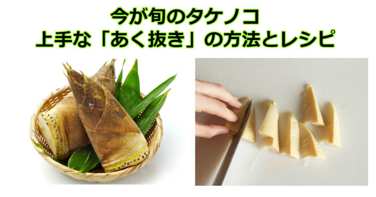 syun.jpg?resize=1200,630 - 今が旬のタケノコ。美味しいレシピと上手に「あく抜き」する方法