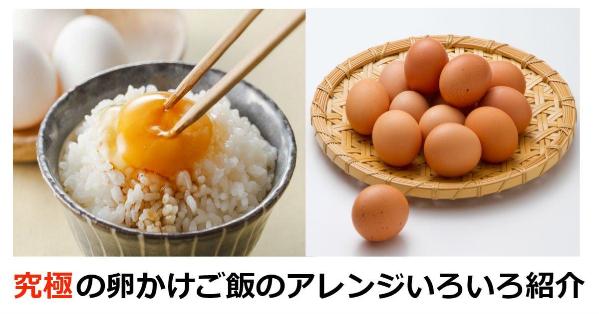 ta.jpg?resize=1200,630 - 究極の卵かけご飯のアレンジいろいろご紹介いたします!