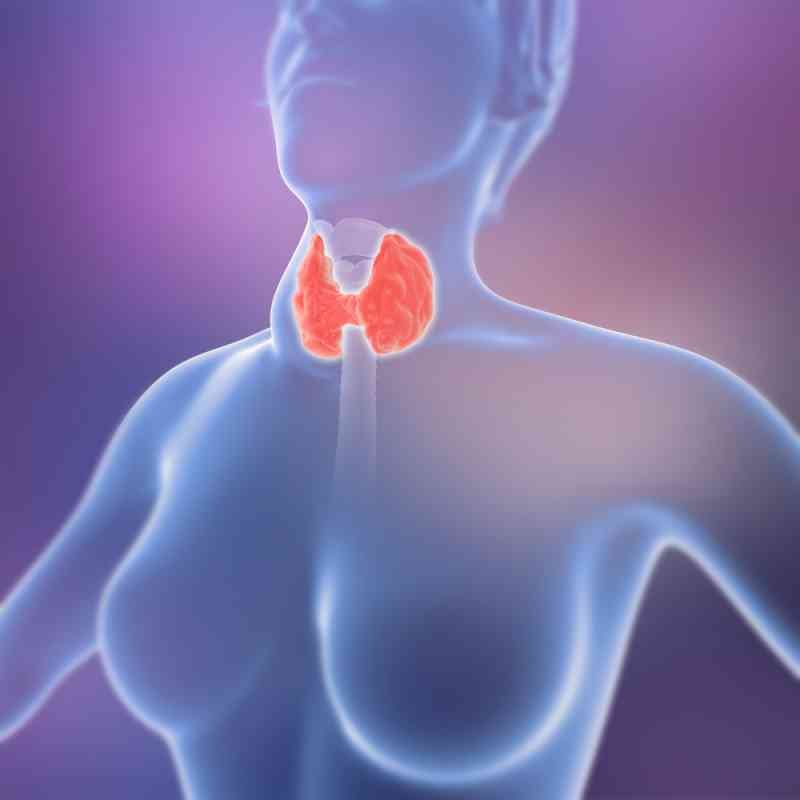 thyroid-disorders-1
