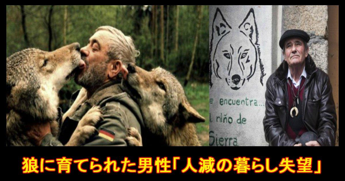 unnamed file 42.jpg?resize=1200,630 - 狼に育てられた男性が人間の暮らしに失望!?『人生で一番幸福だったのは狼との生活』