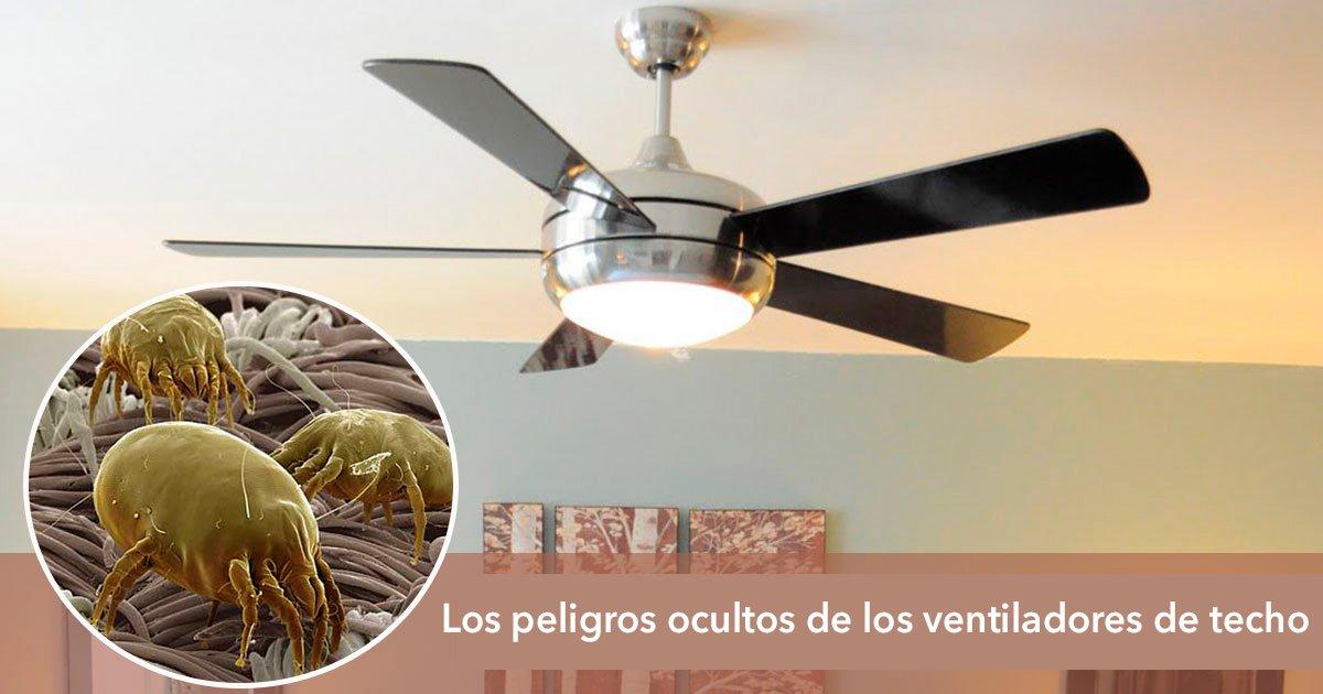 untitled 1 22vent.jpg?resize=1200,630 - Los peligros ocultos de los ventiladores de techo: cosas que debes saber acerca de ellos