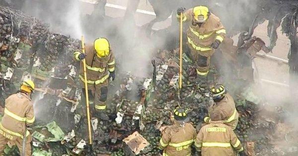 untitled 1 72 e1523345500243 - Os amantes de abacate ficarão tristes: 180kg da fruta pegaram fogo em uma estrada no Texas